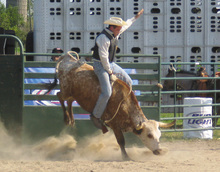 Spotlight: Annual ILGRA Charity Rodeo, Aug. 27-29
