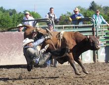 Spotlight: Rodeo Wrap-up