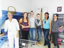 Tree-House-Humane-Society-gets-new-home-executive-director