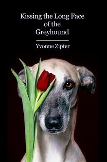 BOOKS-Yvonne-Zipter-Looking-at-Chicagoans-life-poetry-collection