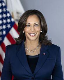 NATIONAL-Panic-defense-VP-Kamala-Harris-Black-LGBTQ-app-crime-items